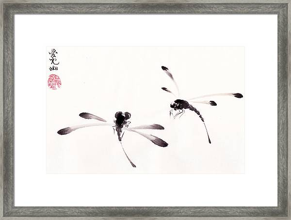 Dance Of The Dragonflies Framed Print
