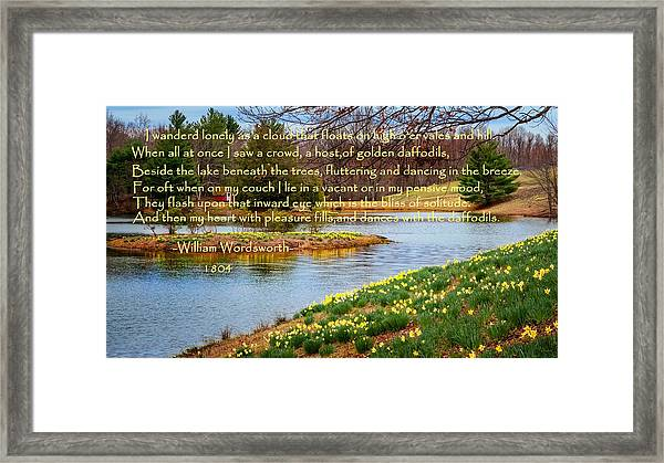 Dances With The Daffodils Framed Print