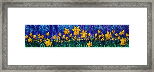 Dancing Daffodils  Framed Print