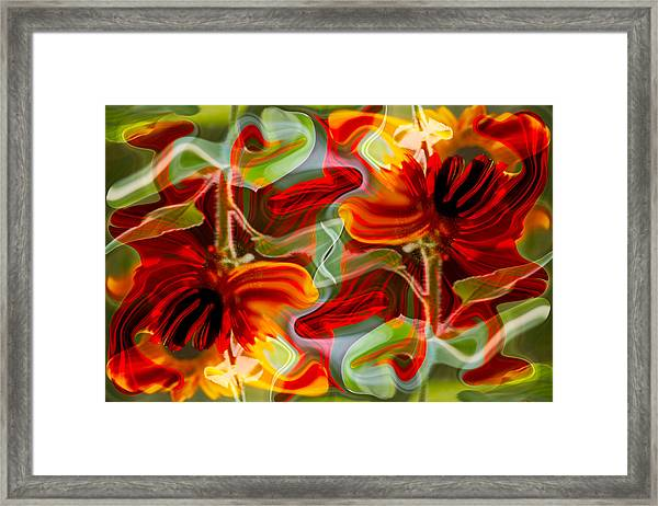 Dancing Flowers Framed Print
