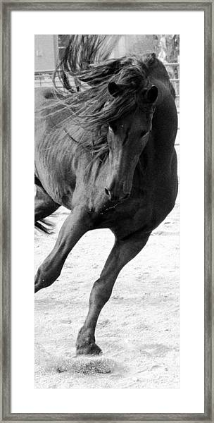 Dancing In Time Framed Print