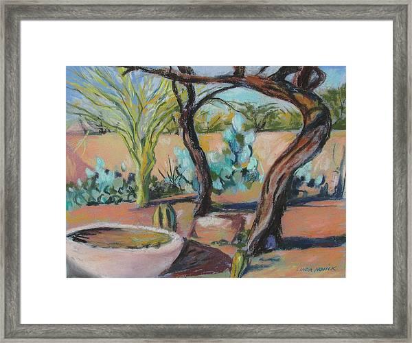 Dancing Mesquite Trees Framed Print