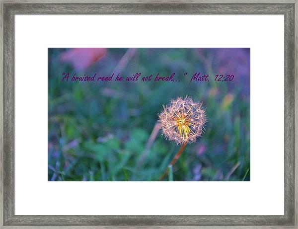 Dandelion Encouragement Framed Print