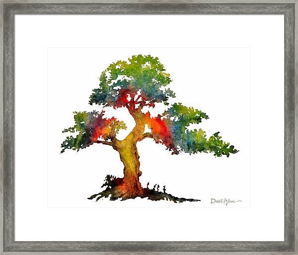 Da140 Rainbow Tree Daniel Adams Framed Print