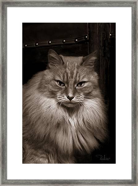 Dark Portrait Framed Print