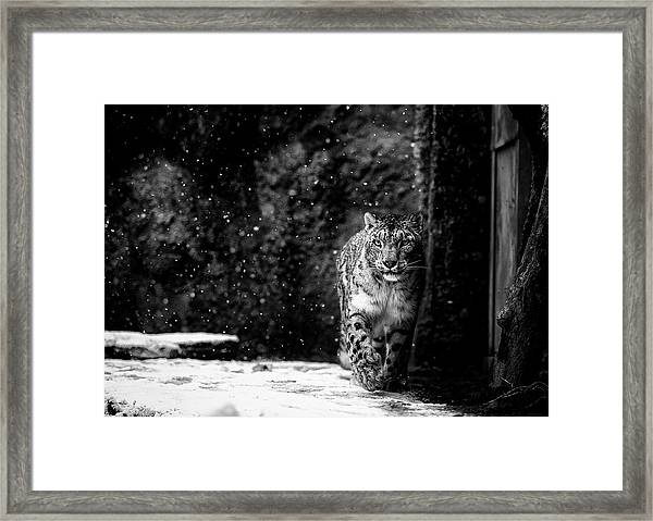 Dark Side Framed Print