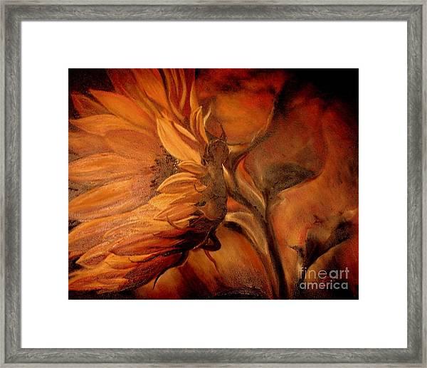 Dark Sunflower Framed Print