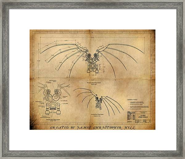 Davinci's Wings Framed Print