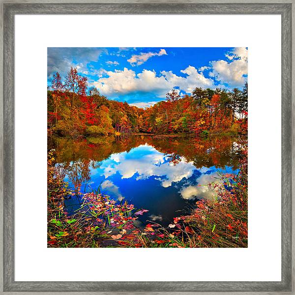 Davis Pond Reflections Framed Print