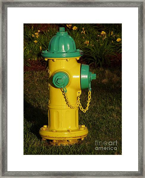 Dawgs Best Friend... Framed Print