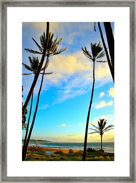 Dawn And Palms Kauia - Hawaii Framed Print