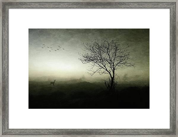 Dawn.......... Framed Print