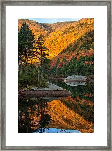 Dawns Foliage Reflection Framed Print