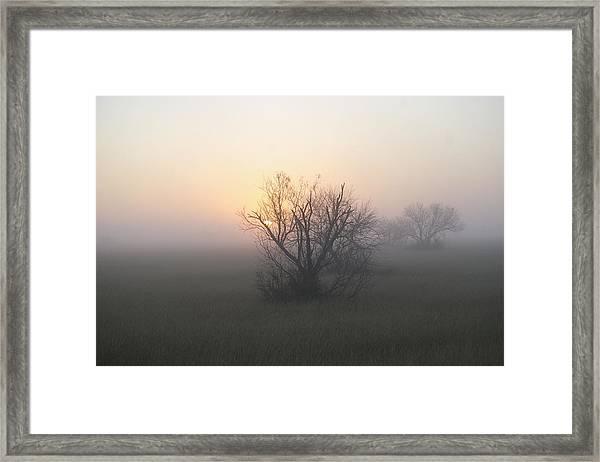 Daybreak Framed Print by Rodney Mumford