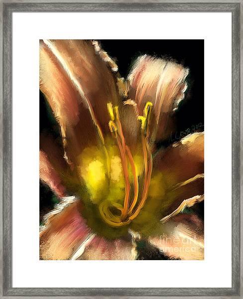 Daylily 2 Framed Print