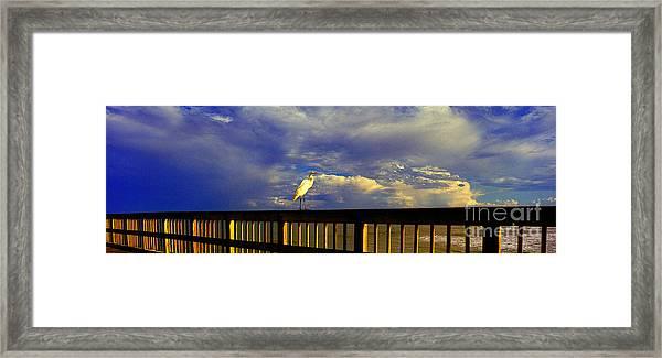Daytona Beach Rail Bird Sun Glow Pier  Framed Print