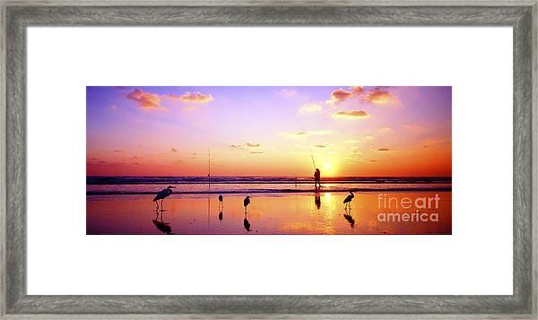 Daytona Beach Fl Surf Fishing And Birds Framed Print