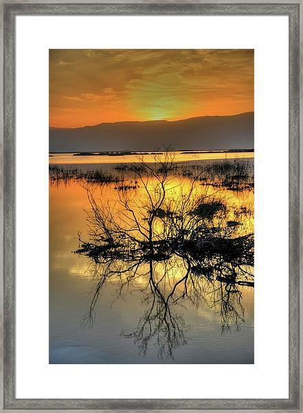 Dead Sea At Sunrise Framed Print