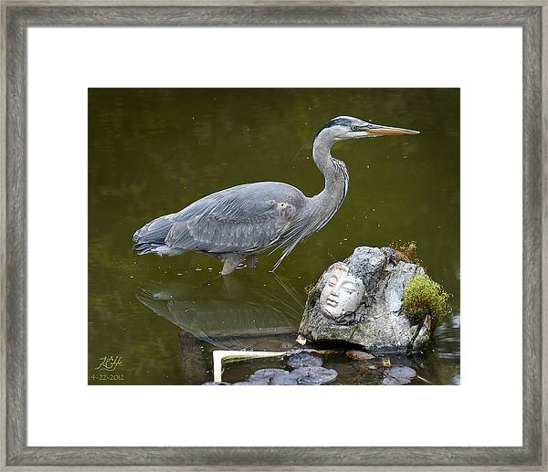 Death From Above With Buddha Framed Print