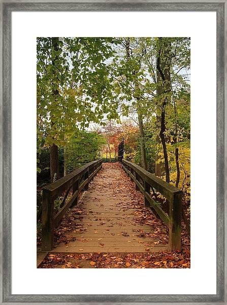 Decorate With Leaves - Holmdel Park Framed Print