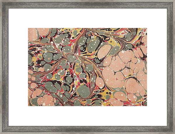 Decorative End Paper  Framed Print