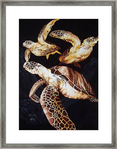 Deep Swim Framed Print