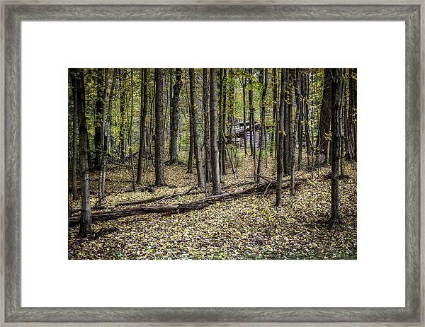 Deep Woods Cabin Framed Print