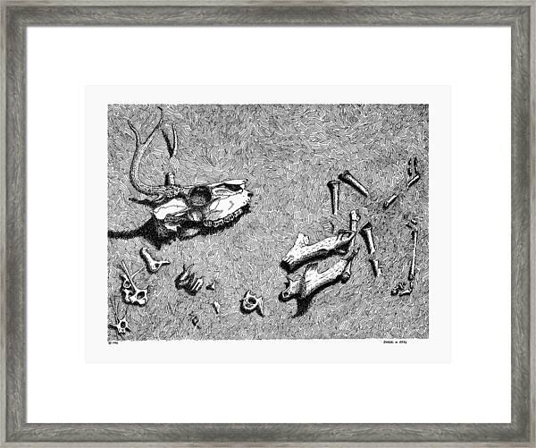 Deer Bones Framed Print