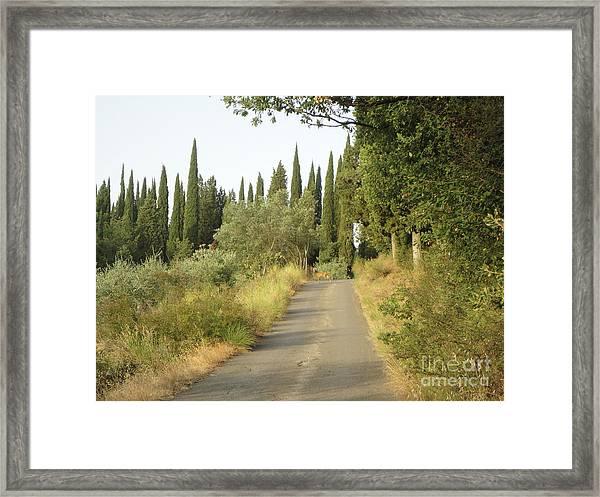 Deer In Loppiano Framed Print