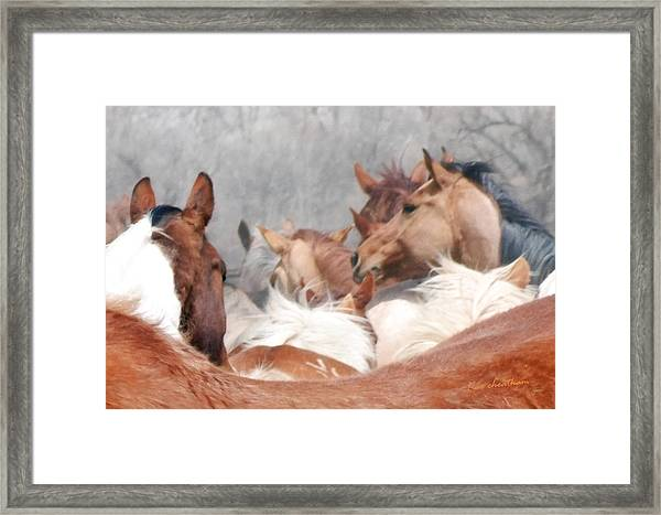 Delicate Illusion Framed Print