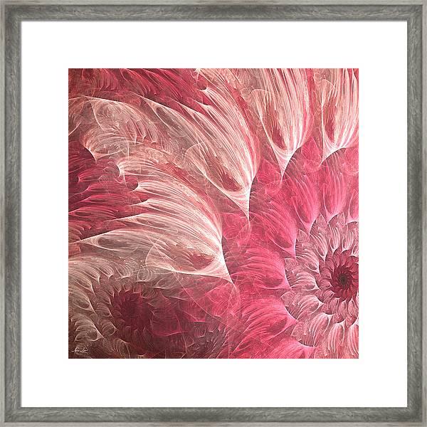 Delicately Framed Print