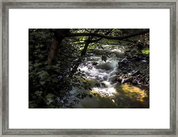 Dell Framed Print
