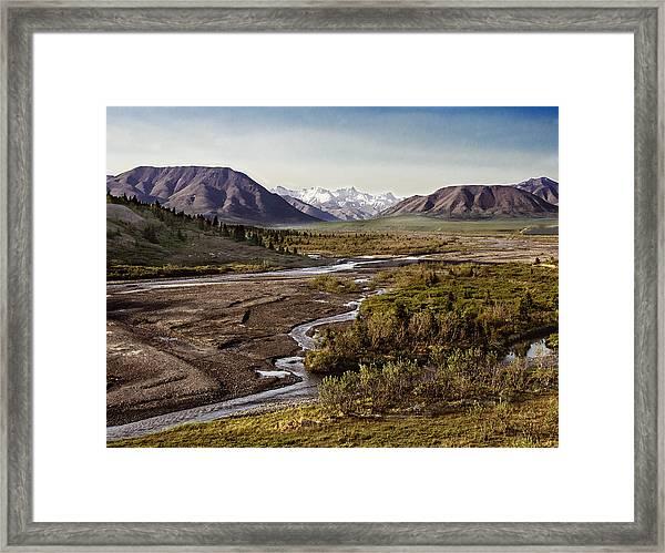 Denali Toklat River Framed Print