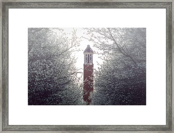 Denny Chimes Foggy Blossoms Framed Print