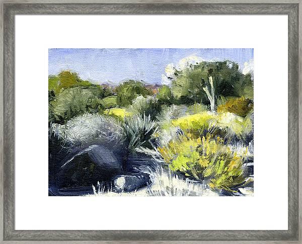 Desert 2 Framed Print by Stacy Vosberg