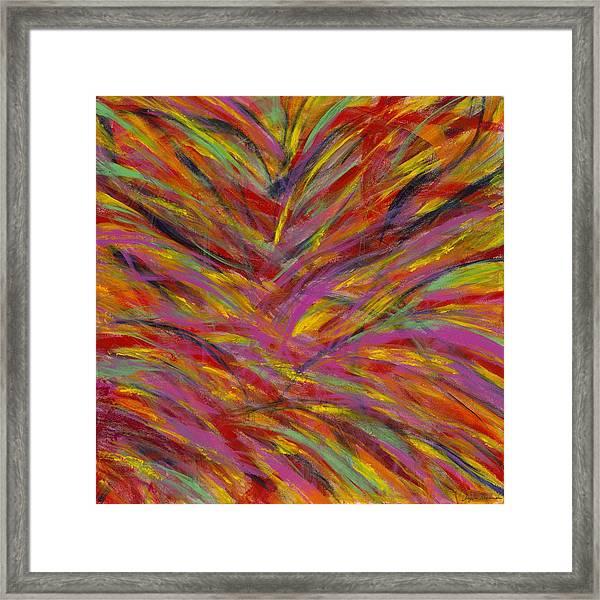 Desert Blossoms Framed Print