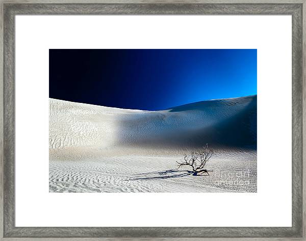 Desert Branch Void Framed Print