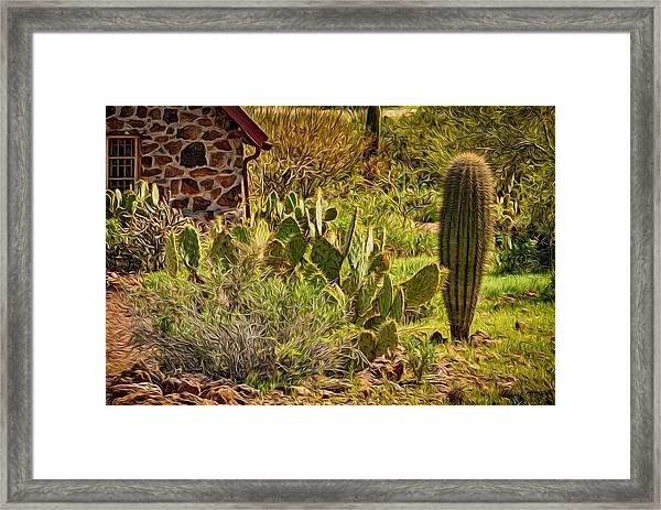 Desert Dream Framed Print