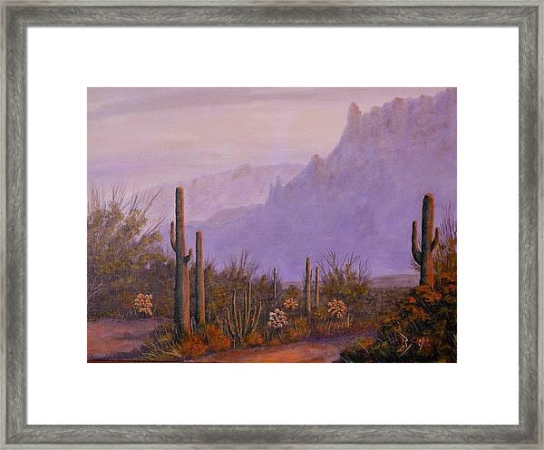 Desert Dusk Framed Print