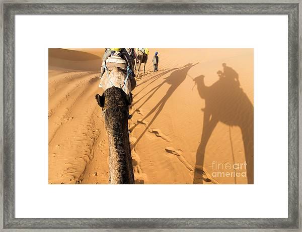 Desert Excursion Framed Print