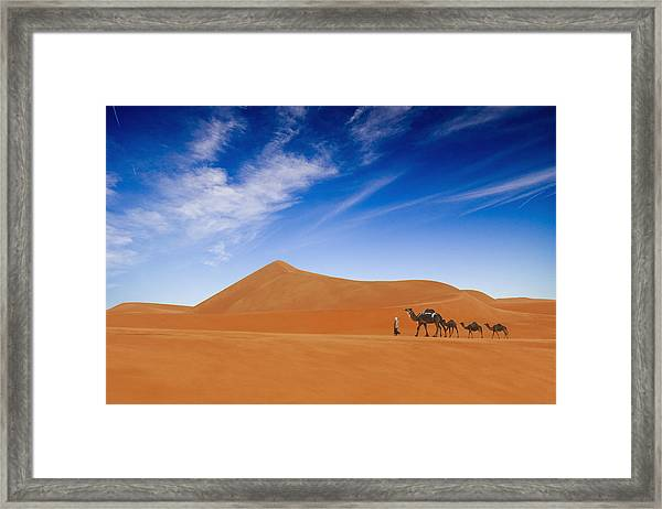 Desert Life .. Framed Print