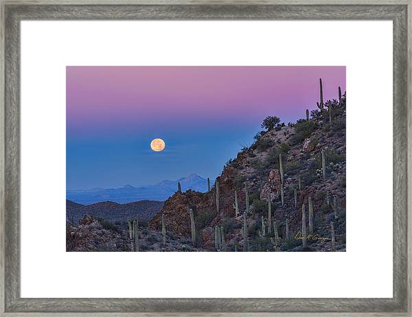 Desert Moonset Framed Print