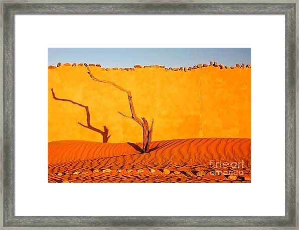 Namibia Desert Still Life Framed Print
