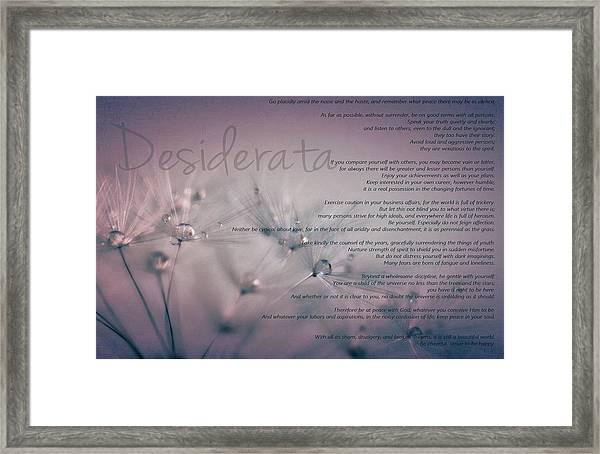 Desiderata - Dandelion Tears Framed Print