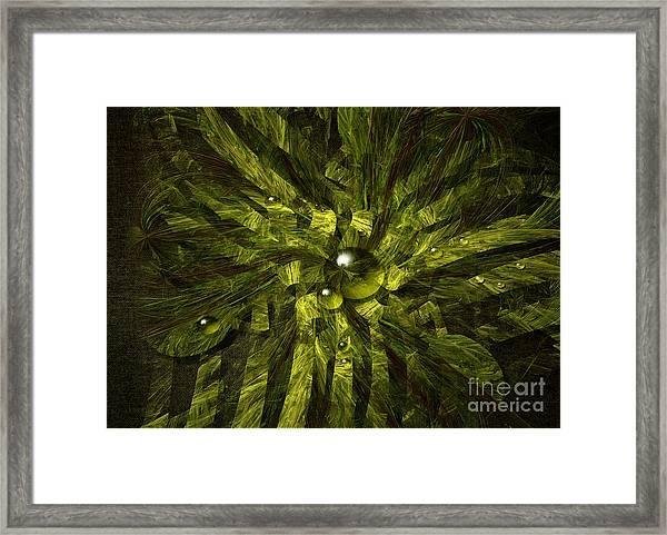 Dewdrops Framed Print