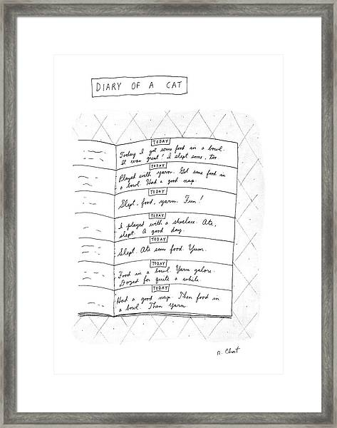 Diary Of A Cat: Framed Print