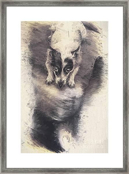 Digital Artwork Of A Mini Fox Terrier Dog Framed Print