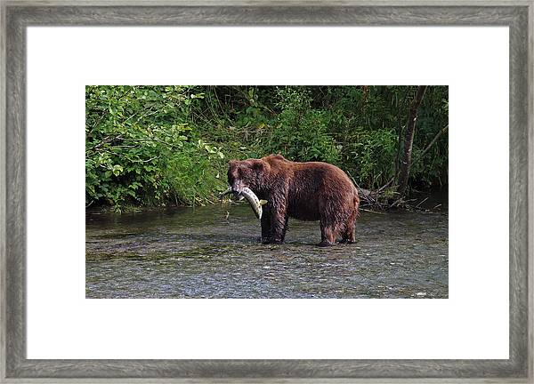 Dinner Is Served Framed Print