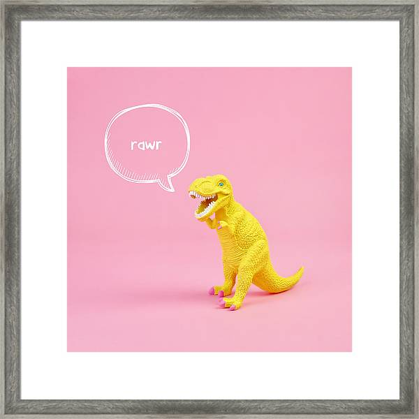 Dinosaur Rawr Framed Print