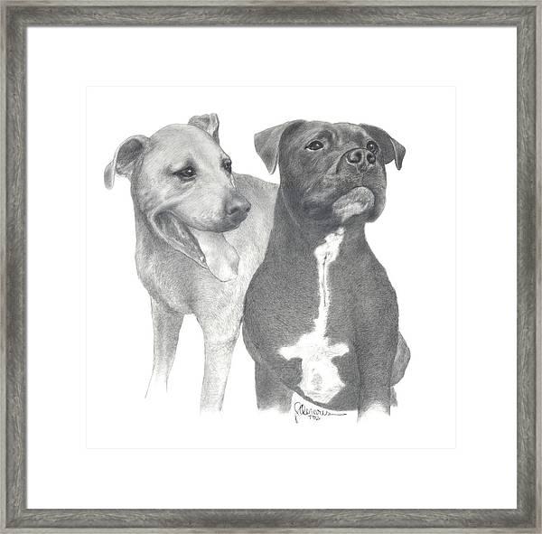 Dippy And Muggs Framed Print
